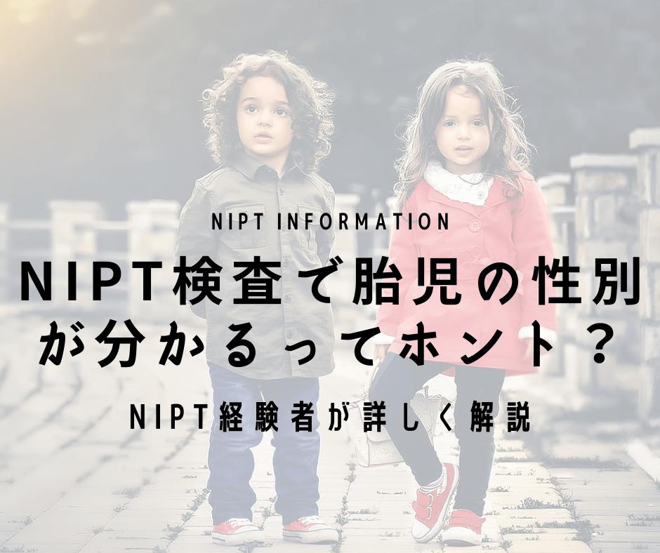 NIPT検査で胎児の性別 が分かるってホント?